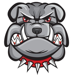 Angry bulldog head vector image