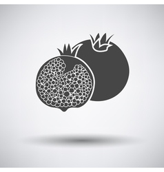 Pomegranate icon on gray background vector