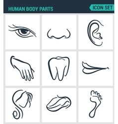 Set of modern icons human body parts eyes vector