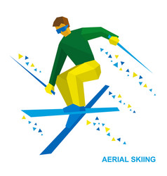 aerial skiing freestyle skier during a jump vector image