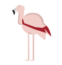 Isolated abstract flamingo vector