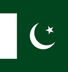 pakistan flag flat style vector image