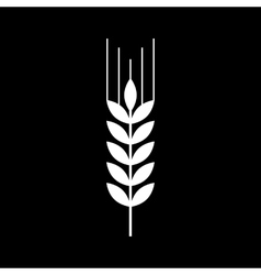 Wheat icon vector