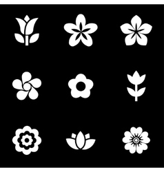 White flowers icon set vector