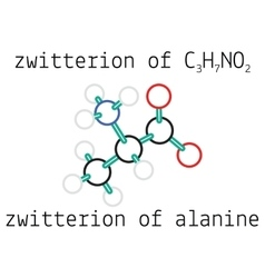 C3h7no2 zwitterion of alanine amino acid molecule vector