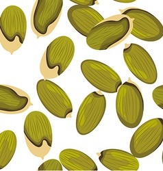 Pumpkin seeds vector