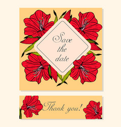 Set of cards with amaryllis floral motifs vector