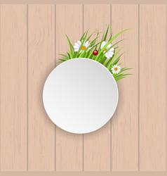Spring greeting card with blooming chamomile vector