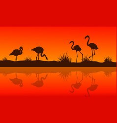 Collection of lake scene with flamingo silhouettes vector