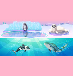 colorful arctic animals horizontal banners vector image vector image