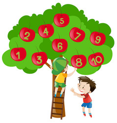 Counting numbers with apples on the tree vector