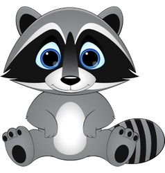 Cute raccoon on white background vector