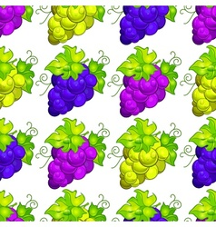 Cluster grapes seamless vector image