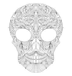floral skull on white background vector image