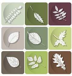 Leaves icon White silhouettes of leaves of forest vector image