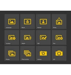 Photographs and Camera icons vector image vector image
