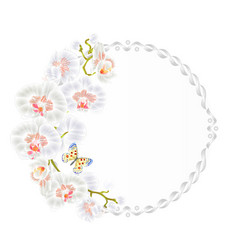 floral round frame with orchids white flowers vector image