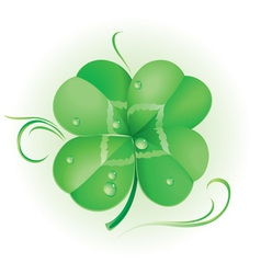 Irish shamrock vector