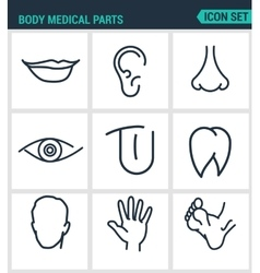 Set of modern icons body medical parts vector