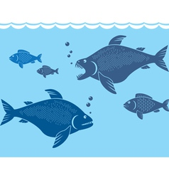 big fish vector image