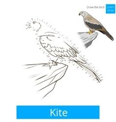 Kite bird learn birds coloring book vector image vector image
