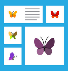 Flat monarch set of violet wing beauty fly vector