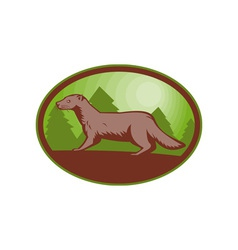 european mink side view vector image