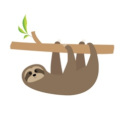 Sloth hanging on tree branch cute cartoon vector