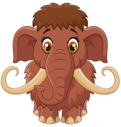 Cartoon cute mammoth vector image vector image