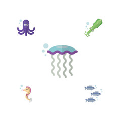 Flat icon marine set of tentacle hippocampus vector