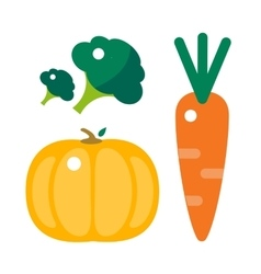 Fresh orange pumpkin carrots and broccoli vector image