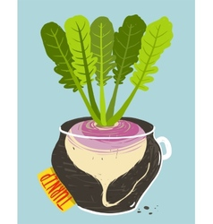 Growing turnip with green leafy top in container vector