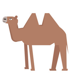 Isolated abstract camel vector