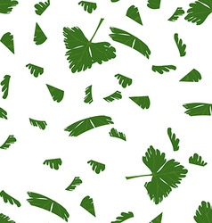 Chopped parsley vector