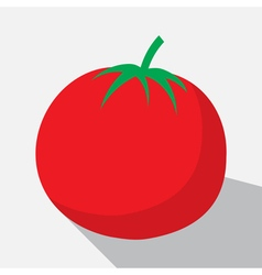 Tomato and long shadow vector