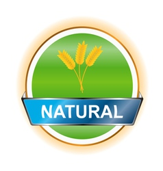 Natural icon vector image