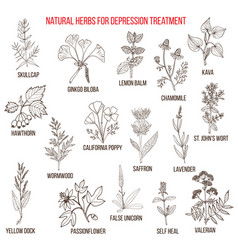 Best herbal remedies for deppression vector