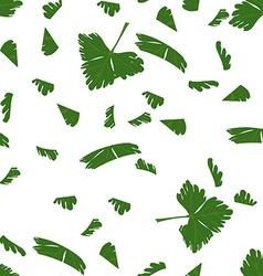 Chopped parsley vector