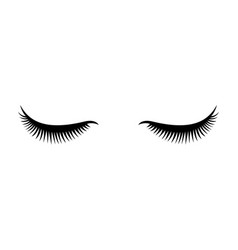 eye lashes icon lashes vector image vector image