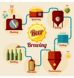Beer brewing process infographic in flat style vector