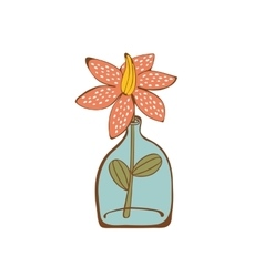 Beautiful house plant in glass vase vector