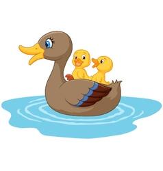 Ducks on the pond vector