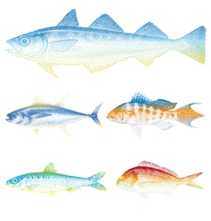 sea fishes set vector image