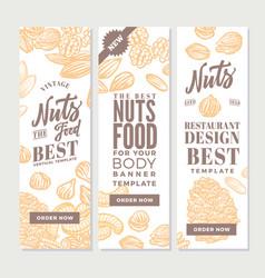 Vintage nuts food vertical banners vector