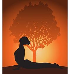 Yoga woman in cobra pose vector