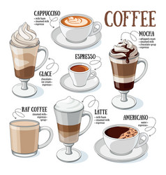 Coffee guide vector