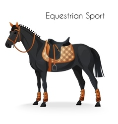 Horse with equestrian sport equipment vector