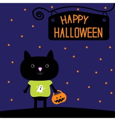 Black cat with halloween pumpkin bucket stars vector
