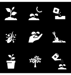 white growing icon set vector image vector image