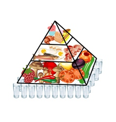 food pyramid vector image